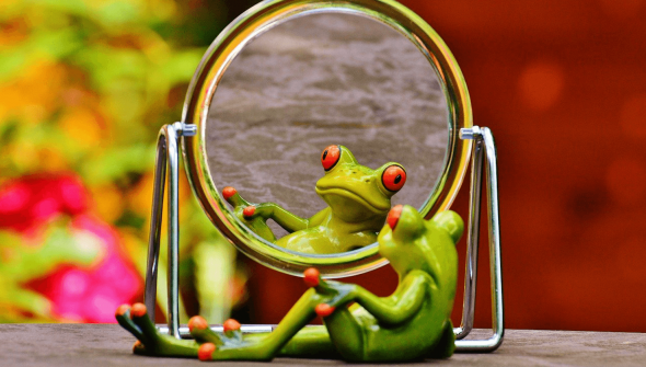 frog figurine staring into a mirror